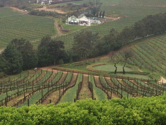 Constantia, Sydafrika: photo0.jpg