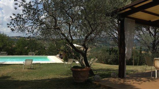 B&B In Villa: photo2.jpg