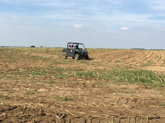 Beugnies, France : Randonnée dans les champs