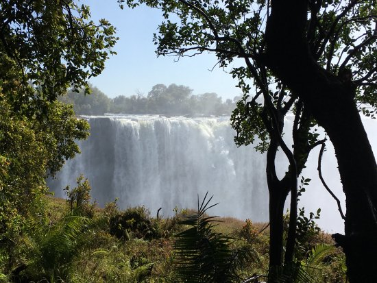 Ilala Lodge: The reason for the visit!