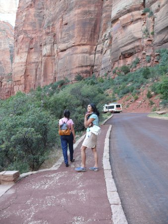 Zion Canyon Scenic Drive: hop off the shuttle and walk some distance