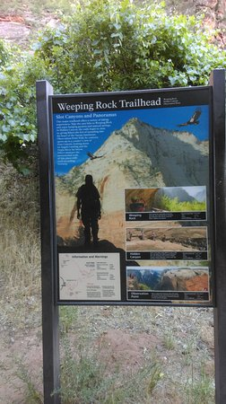 Zion Canyon Scenic Drive: trainlhead for weeping rocks