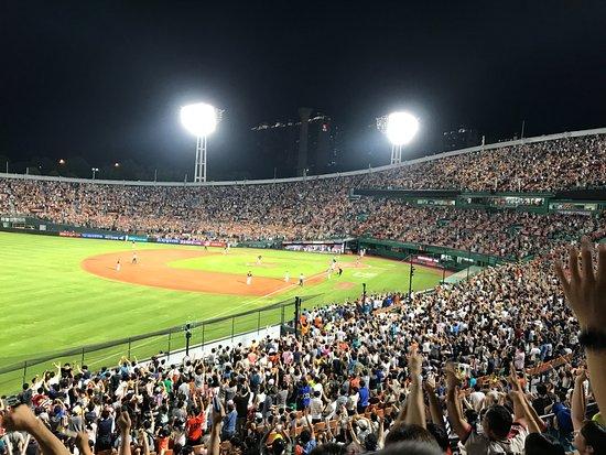 Sajik Baseball Stadium: view from our seats