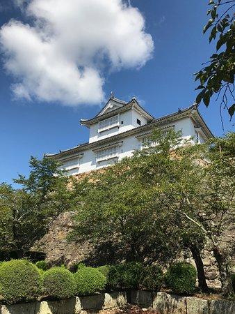 鶴山公園 (津山城)