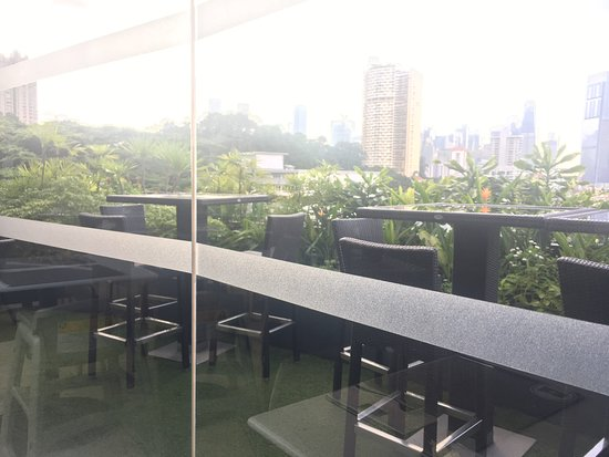 Wangz Hotel: 屋上バー(朝食をいただくところ)