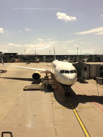 Icelandair Reviews and Flights - TripAdvisor  Icelandair Revi...