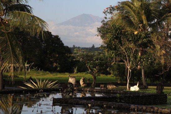 The Chedi Club Tanah Gajah, Ubud, Bali – a GHM hotel: Vue sur le volcan depuis la piscine