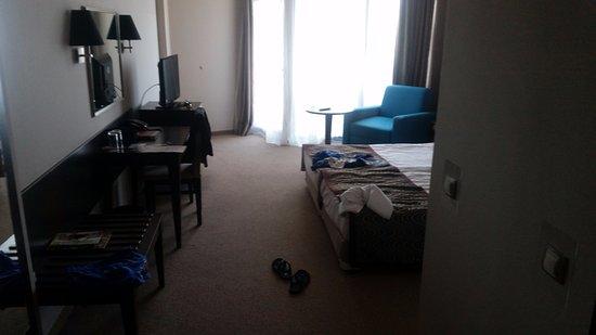 Astera Hotel & Spa: pokój dwuosobowy, tv+lodówka