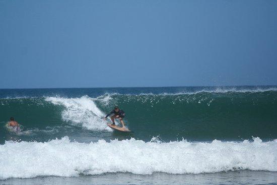 Santa Cruz, Kosta Rika: Jordi