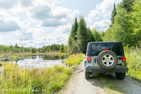 The Birches Resort: Lots of scenic roads to explore!