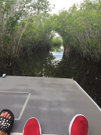 Jungle Erv's Everglades Airboat Tours: photo0.jpg