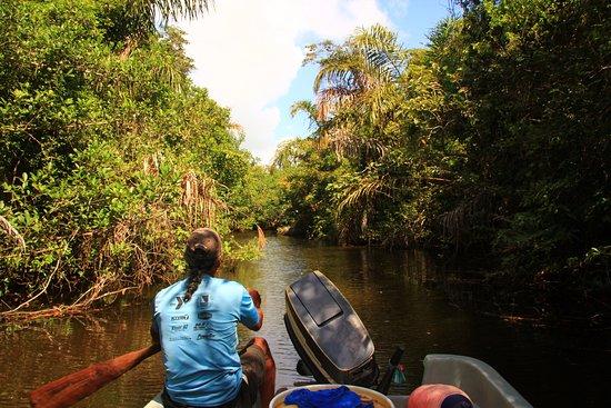 Vapues Nicaragua Tours: Río San Juan