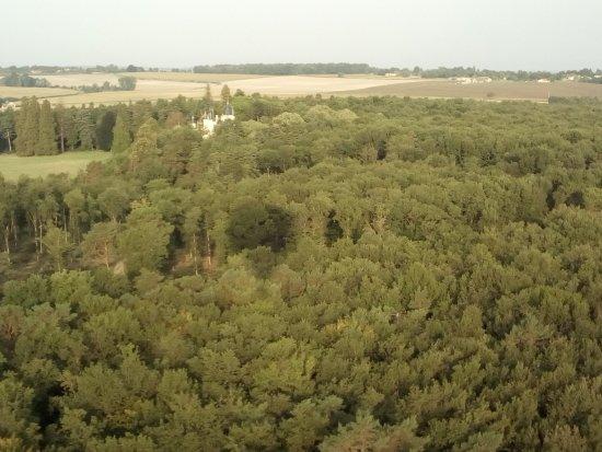 Thure, France: Ombre de la montgolfière sur le bois du domaine du château de Savigny