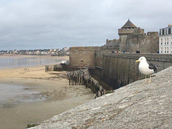 Les remparts de Saint-Malo : photo0.jpg