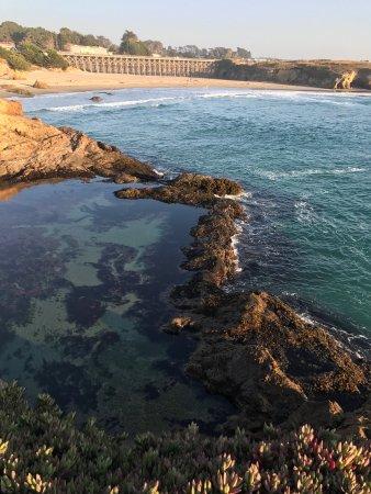 Surf & Sand Lodge: photo1.jpg