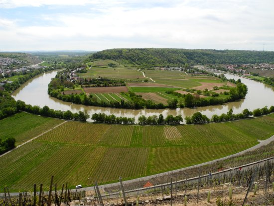 Weinort Mundelsheim am Neckar