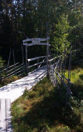 Vansbro, Sweden: Entrén till åsen