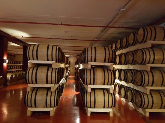 Poli Distillerie: Botti 1