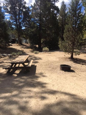Fawnskin, Californien: Serrano Campgrounds - Site 10