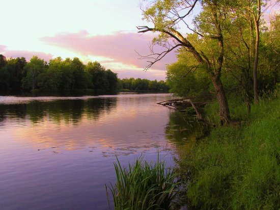 Black River Photo