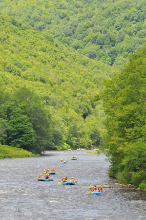 Zoar Outdoor/Deerfield Valley Canopy Tours: The unspoiled valley of the Deerfield River