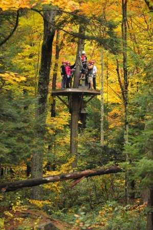 Zoar Outdoor/Deerfield Valley Canopy Tours: Experience the autumn colors up close and personal!