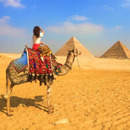 Over Egypt Tours