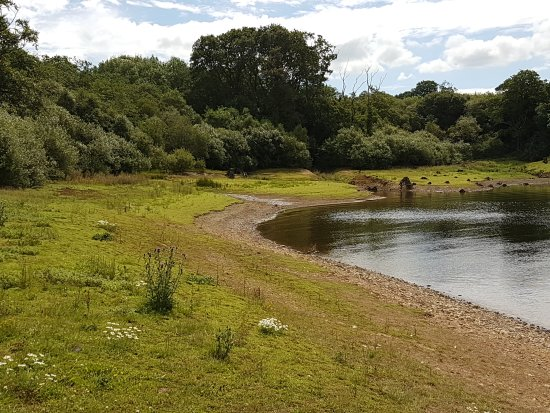 ‪Roadford Lake Country Park‬
