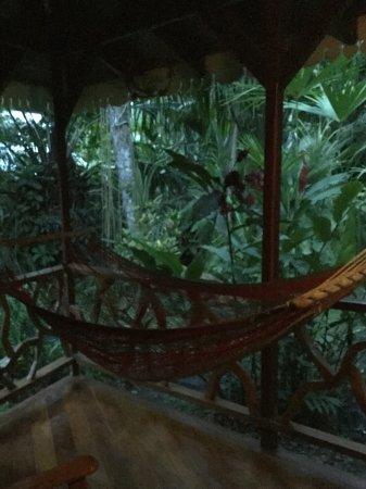 Hotel La Costa de Papito : Big porch attached. Hammock at dawm
