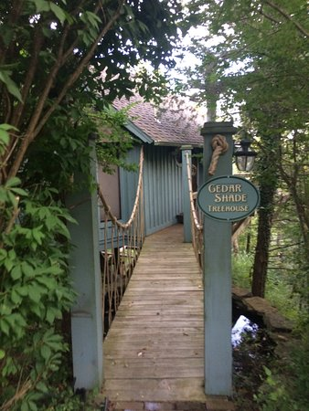 Treehouse Cottages: photo0.jpg