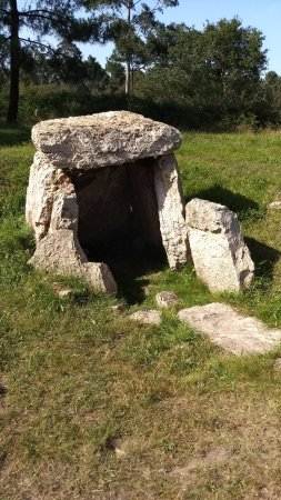 Necropolis del Monte Areo