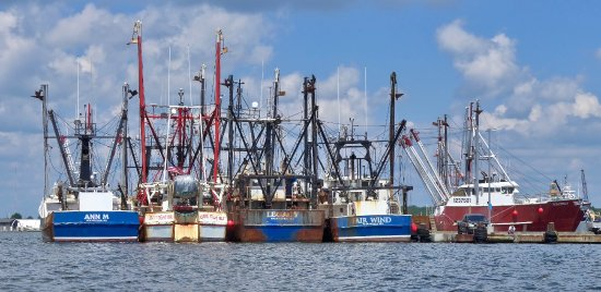 Whaling City Expeditions: Trawlers - Fairhaven (New Bedford Harbor)