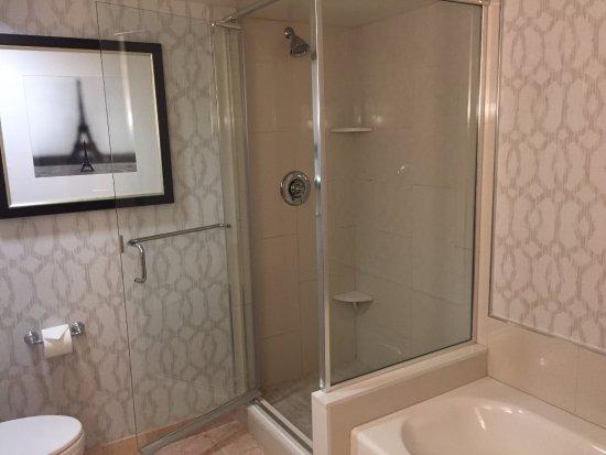 Paris Las Vegas Gl Enclosed Walk In Shower And Tub