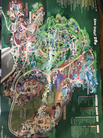 The Zoo Map With Activities Picture Of San Diego Zoo