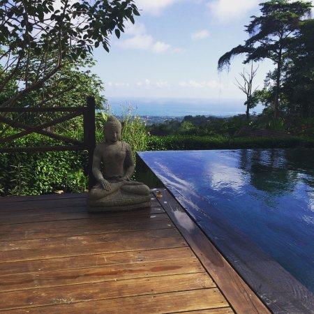 Oxygen Jungle Villas: photo3.jpg