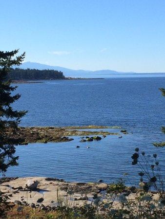 Hornby Island, แคนาดา: photo0.jpg