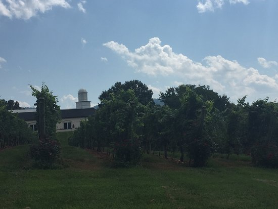 View of Barboursville Tasing Center