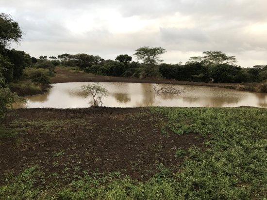 Zululand Safari Lodge: photo4.jpg