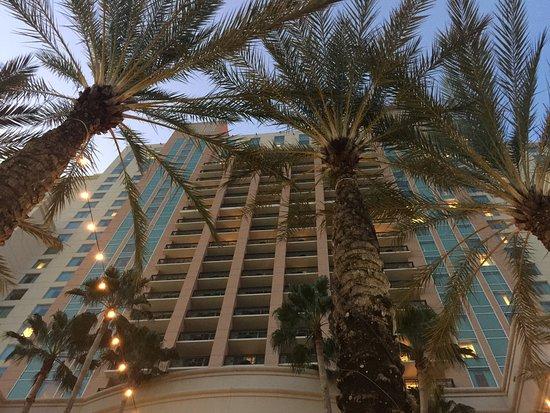 Tampa Marriott Waterside Hotel & Marina: photo0.jpg
