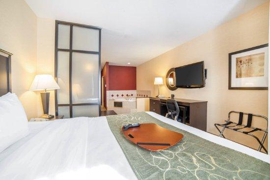 Comfort Suites Helena Airport: Guest room