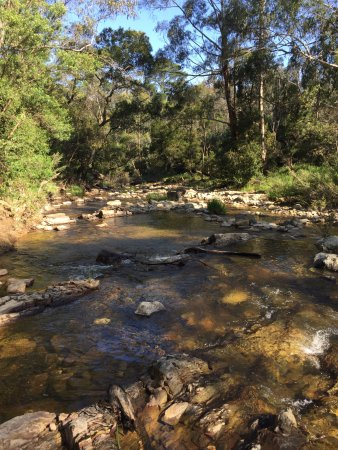 Blackwood Forest, Austrália: Lerderderg River at Golden Point (near Blackwood)