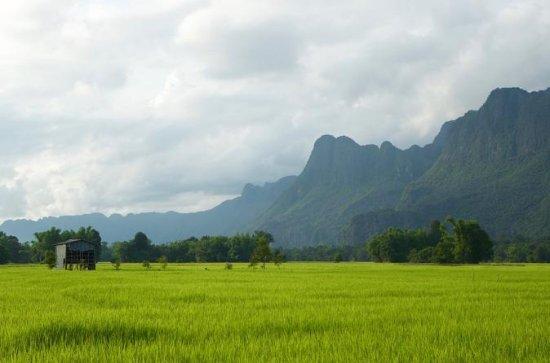 Half Day Rice Experience from Luang Prabang