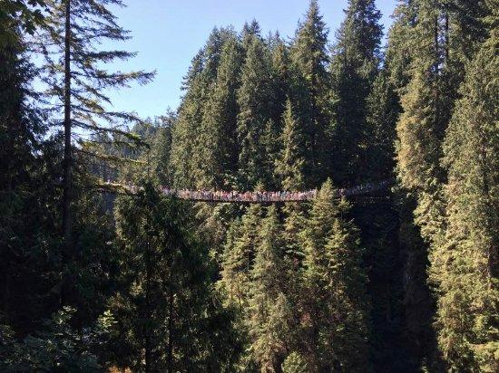 North Vancouver, Canada: Crowds on the bridge