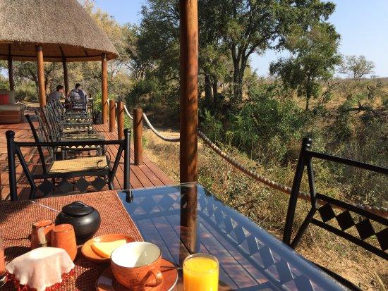 Hoyo-Hoyo Safari Lodge: photo4.jpg