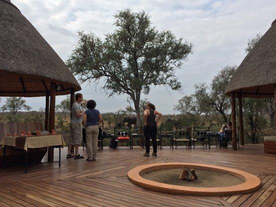 Hoyo-Hoyo Safari Lodge: photo7.jpg