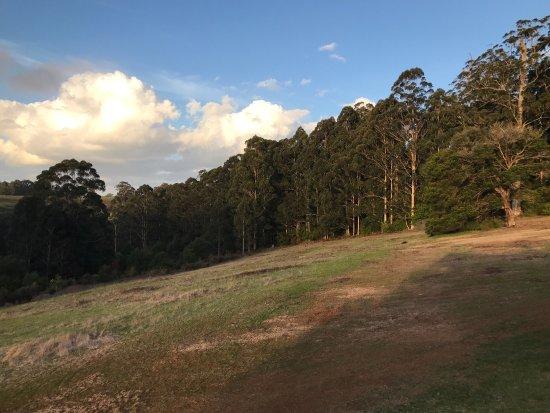Rainbow Trail Chalets: photo0.jpg