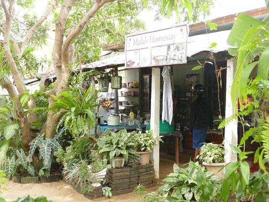 Außenküche Für Kinder : Garten mit außenküche picture of mala s homestay batticaloa