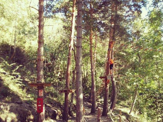 Pirineus Parc Aventura: Circuito en árboles.