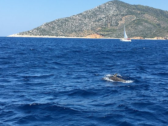AEGEO Sailing Yacht: photo0.jpg