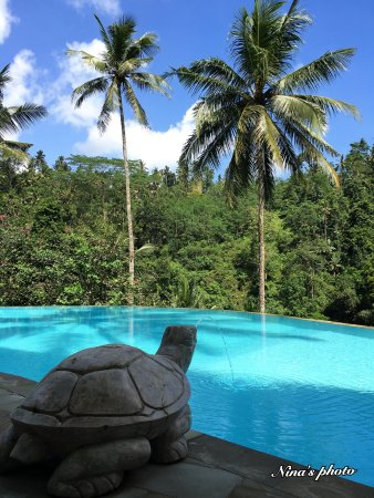 Ayung Resort Ubud Updated 2017 Prices Amp Hotel Reviews
